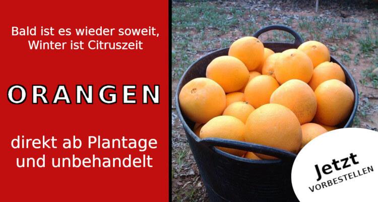 unbehandelte Früchte direkt von der Plantage